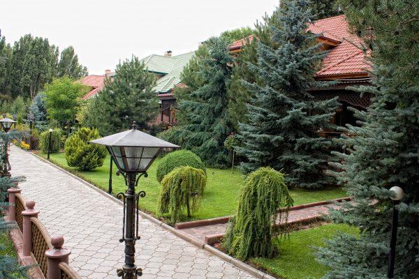 VIP Solnyshko
